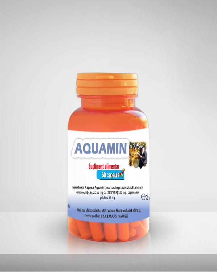 AQUAMIN MEDICER 60 CAPSULE